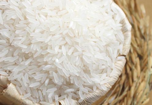Vietnam Jasmine Rice